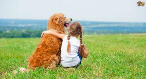 tackling-a-dog-that-is-aggressive-towards-children-54edea12b6cc0.jpg