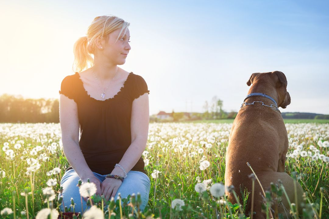 is your dog ignoring you?
